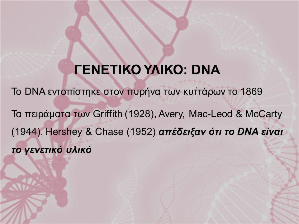 ΓΕΝΕΤΙΚΟ ΥΛΙΚΟ: DNA Το DNA εντοπίστηκε στον πυρήνα των κυττάρων το 1869.
