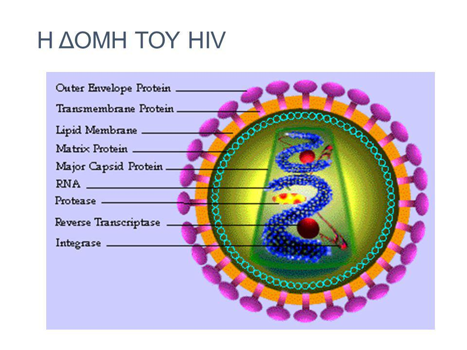 H ΔΟΜΗ ΤΟΥ HIV