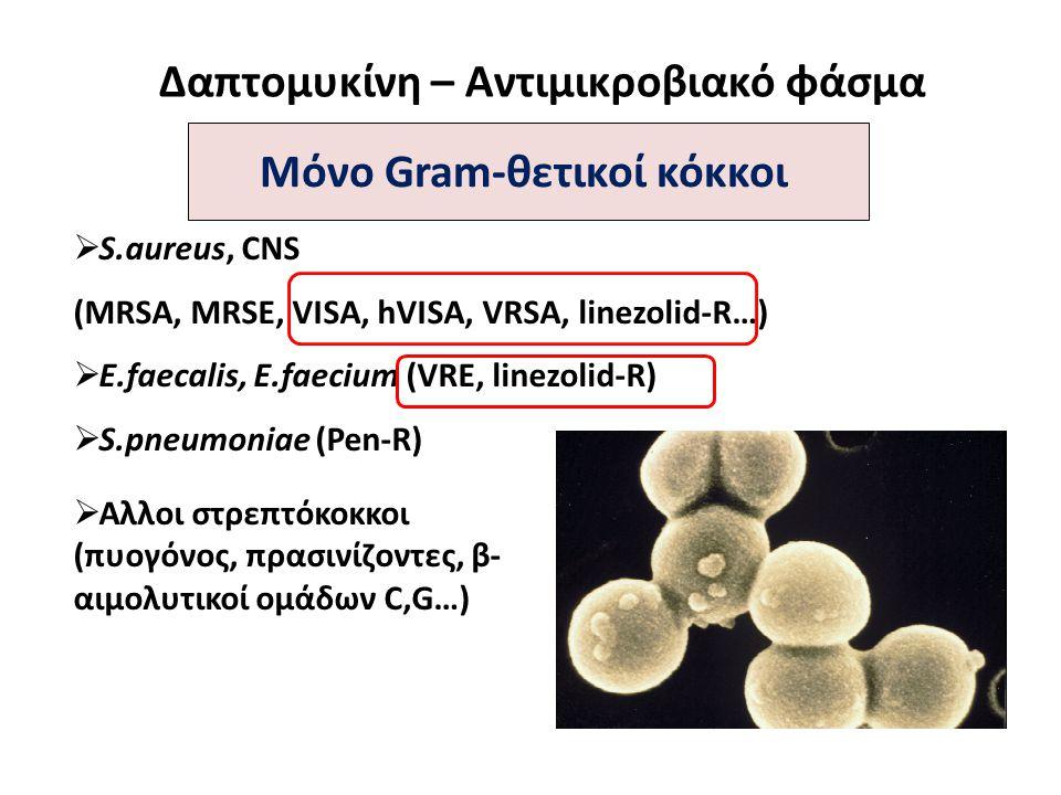 Δαπτομυκίνη – Αντιμικροβιακό φάσμα