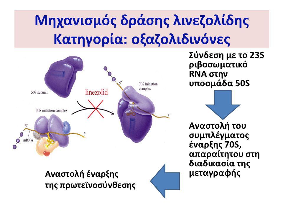 Μηχανισμός δράσης λινεζολίδης Κατηγορία: οξαζολιδινόνες