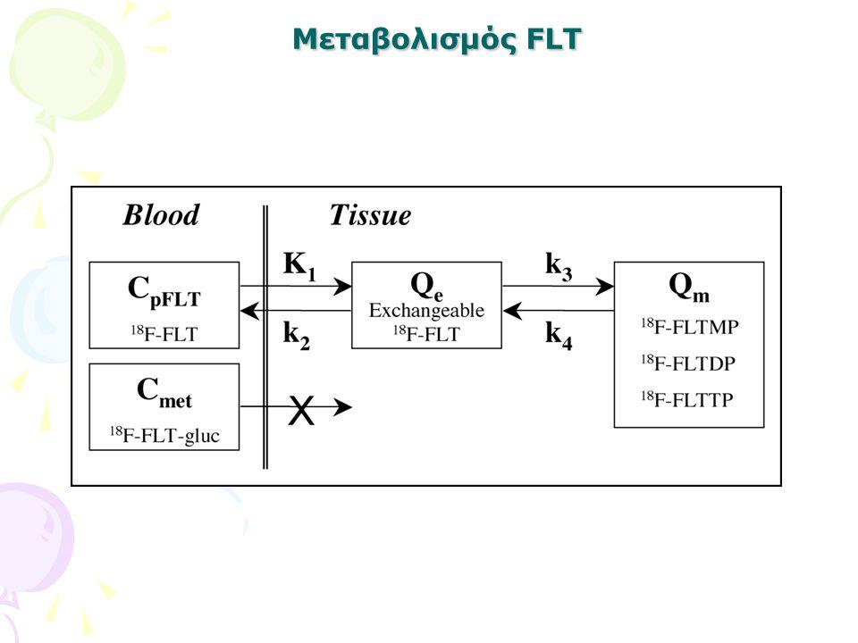 Μεταβολισμός FLT