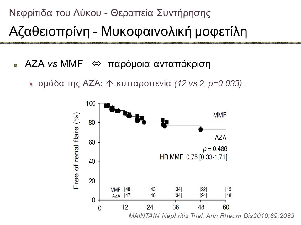 AZA vs MMF  παρόμοια ανταπόκριση