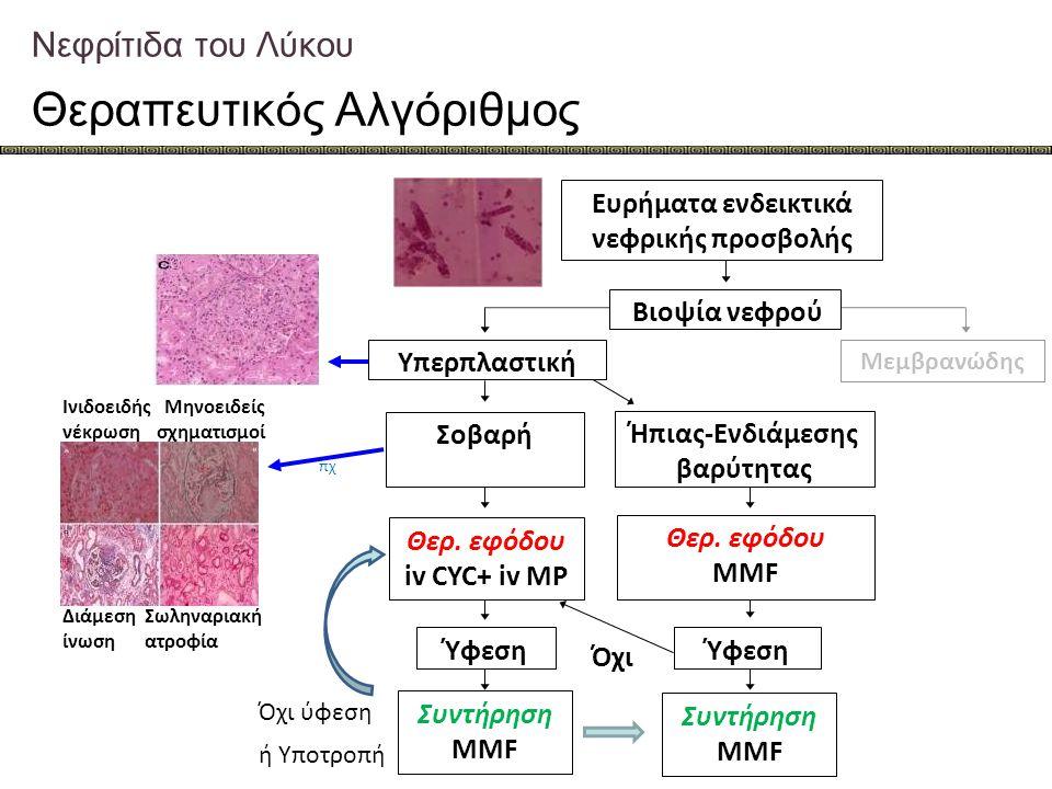 Νεφρίτιδα του Λύκου Θεραπευτικός Αλγόριθμος