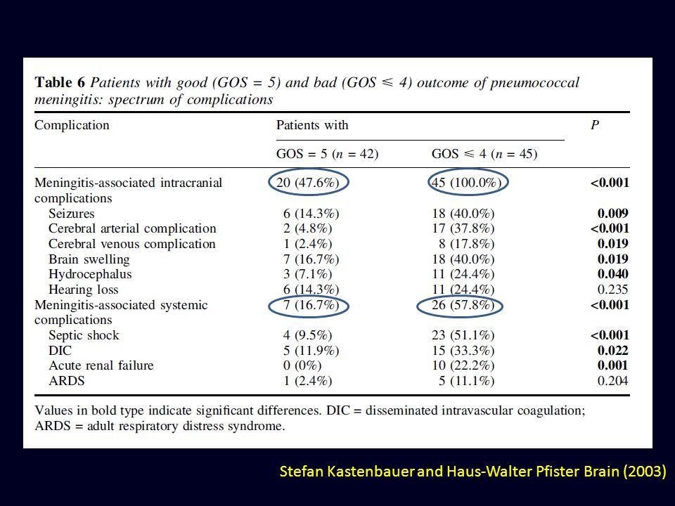 Stefan Kastenbauer and Haus-Walter Pfister Brain (2003)