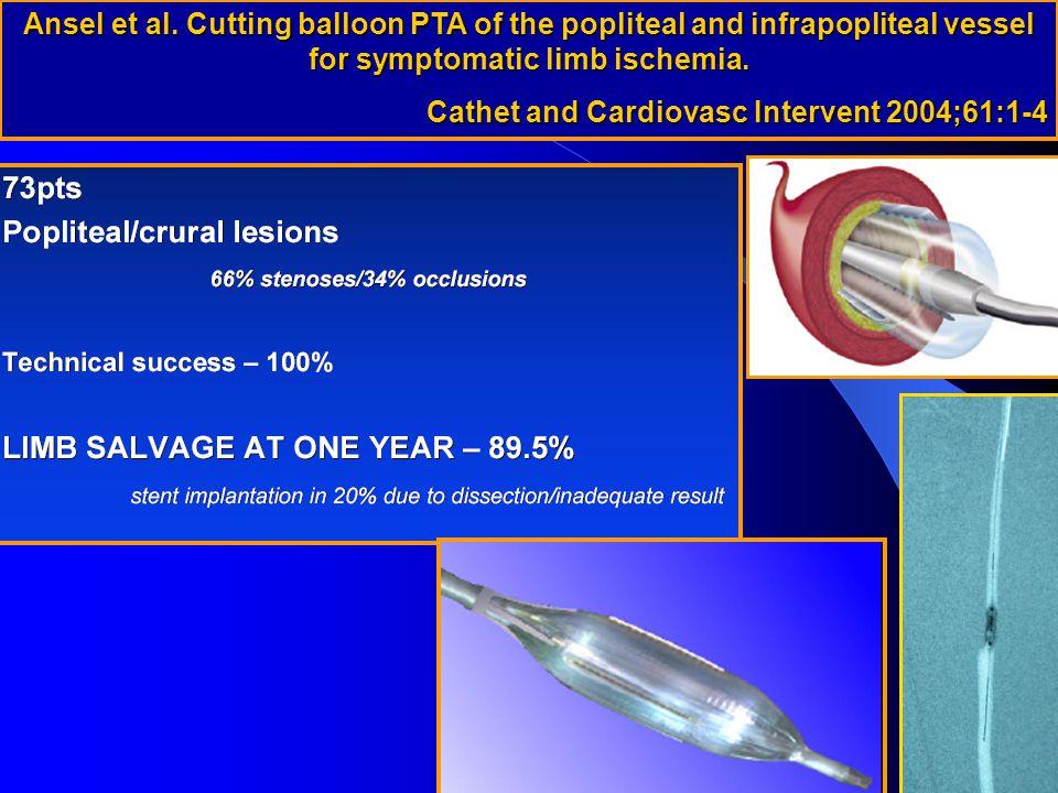 Cathet and Cardiovasc Intervent 2004;61:1-4
