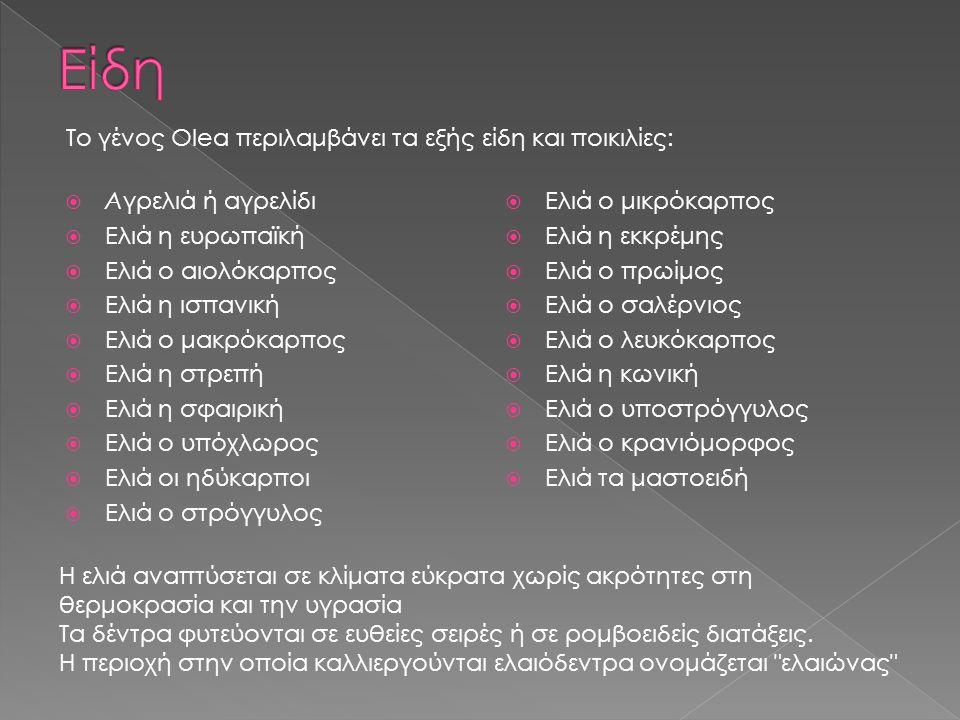 Είδη Το γένος Olea περιλαμβάνει τα εξής είδη και ποικιλίες: