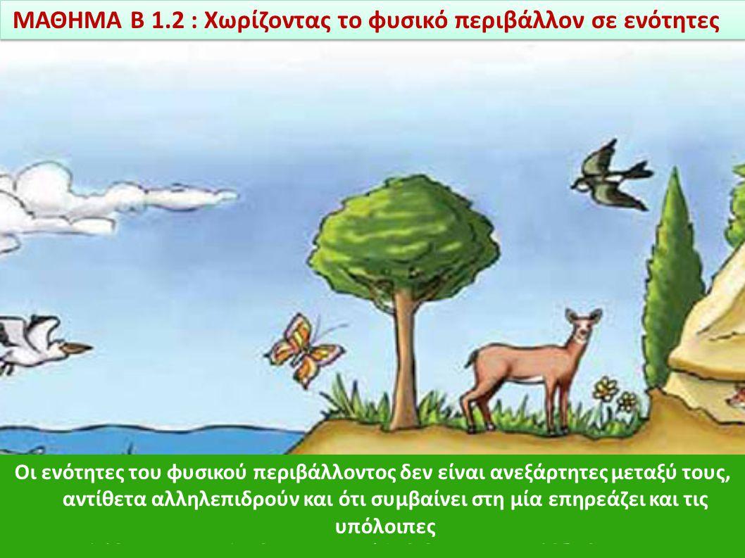 Οι ενότητες του φυσικού περιβάλλοντος είναι: