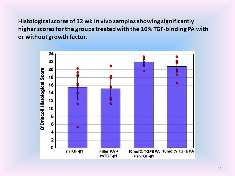 Histological scores of 12 wk in vivo samples showing significantly