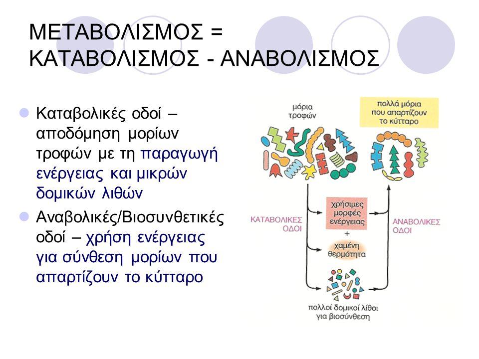 ΜΕΤΑΒΟΛΙΣΜΟΣ = ΚΑΤΑΒΟΛΙΣΜΟΣ - ΑΝΑΒΟΛΙΣΜΟΣ