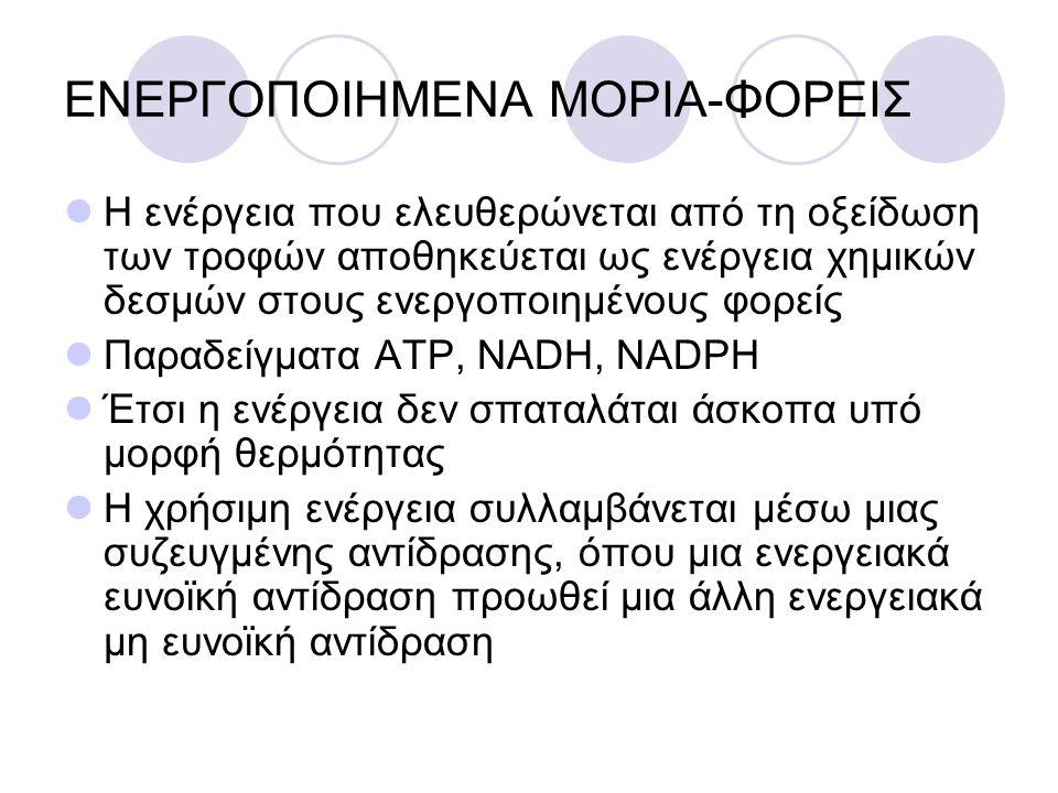 ΕΝΕΡΓΟΠΟΙΗΜΕΝΑ ΜΟΡΙΑ-ΦΟΡΕΙΣ