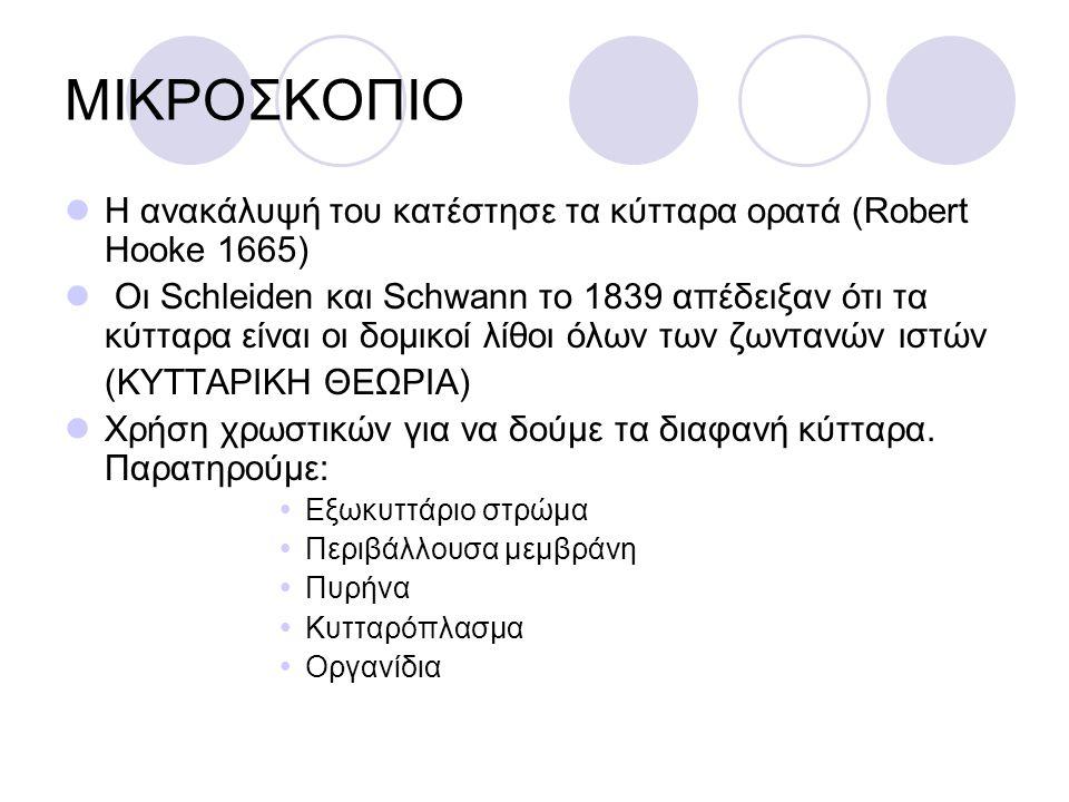 ΜΙΚΡΟΣΚΟΠΙΟ Η ανακάλυψή του κατέστησε τα κύτταρα ορατά (Robert Hooke 1665)