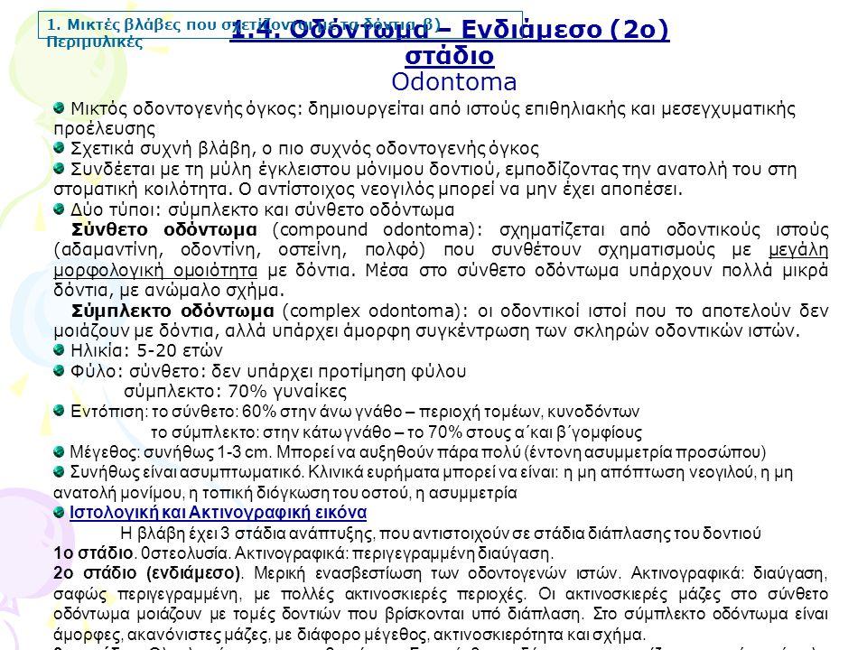 1.4. Οδόντωμα – Ενδιάμεσο (2ο) στάδιο Odontoma