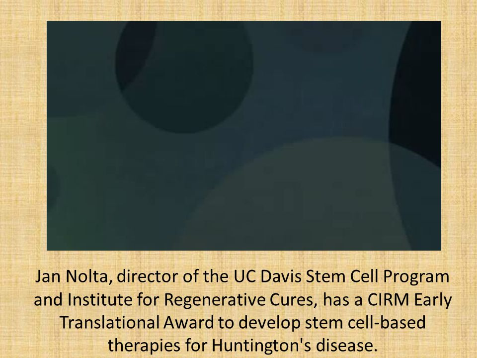 Jan Nolta, director of the UC Davis Stem Cell Program and Institute for Regenerative Cures, has a CIRM Early Translational Award to develop stem cell-based therapies for Huntington s disease.