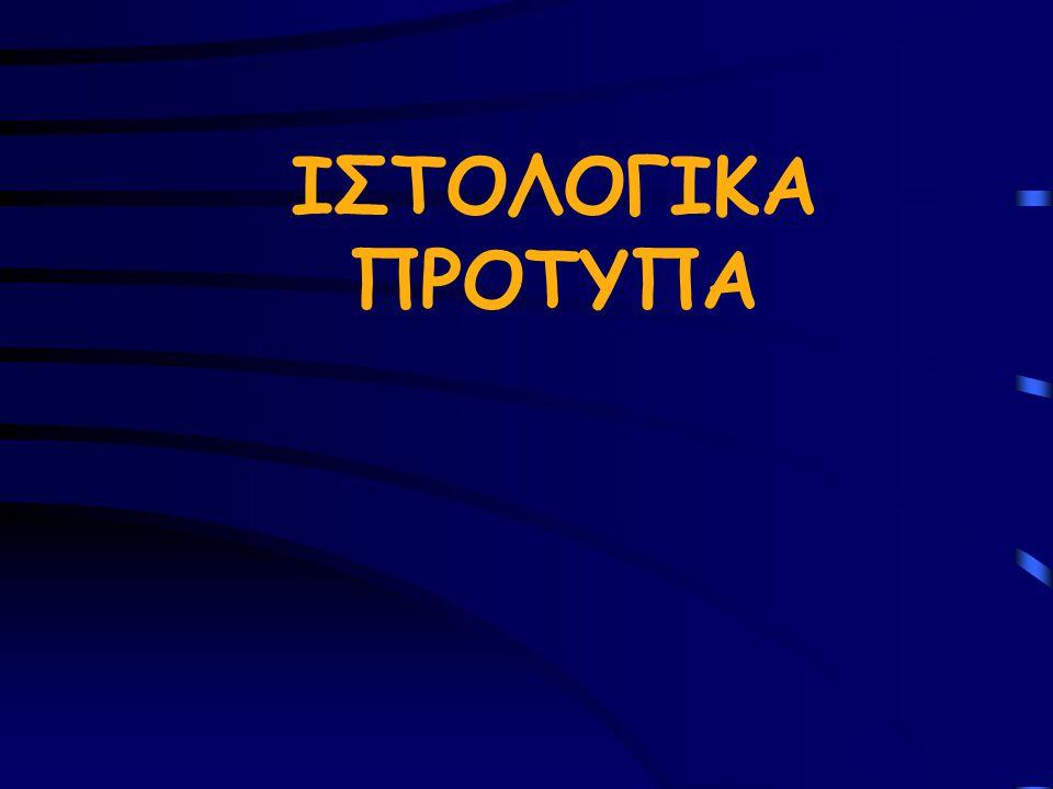 ΙΣΤΟΛΟΓΙΚΑ ΠΡΟΤΥΠΑ
