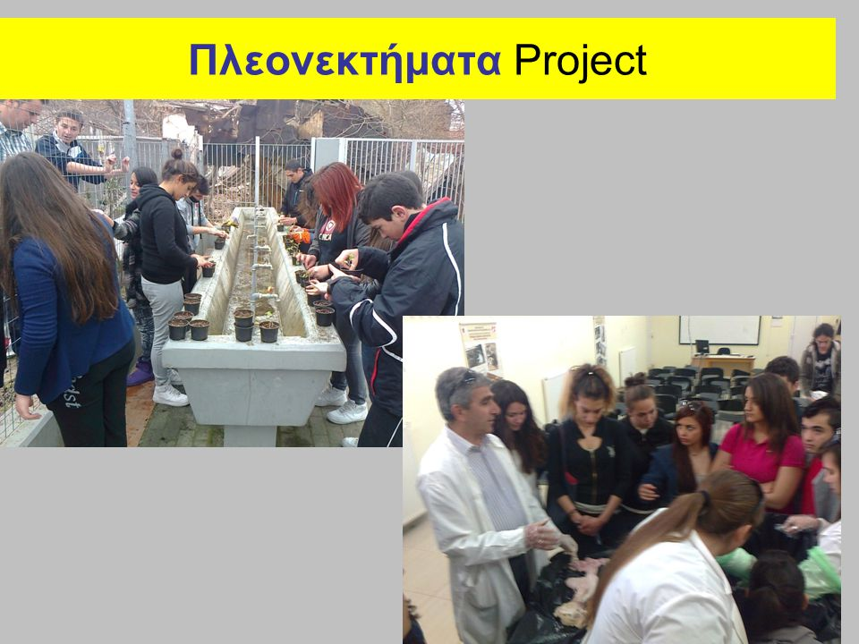 Πλεονεκτήματα Project