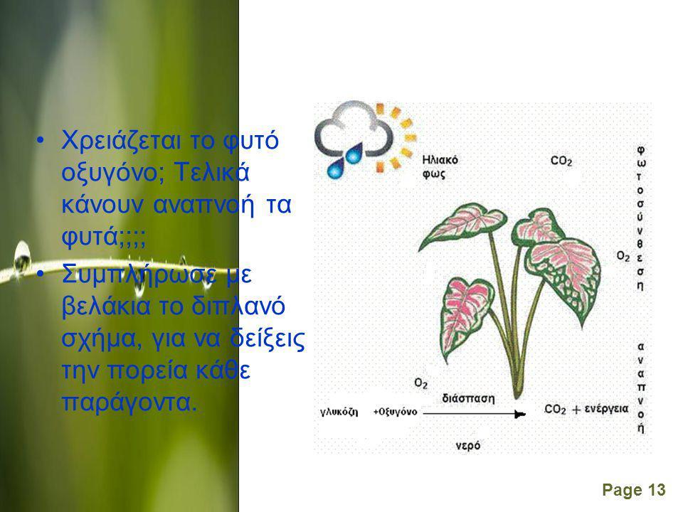 Χρειάζεται το φυτό οξυγόνο; Τελικά κάνουν αναπνοή τα φυτά;;;;