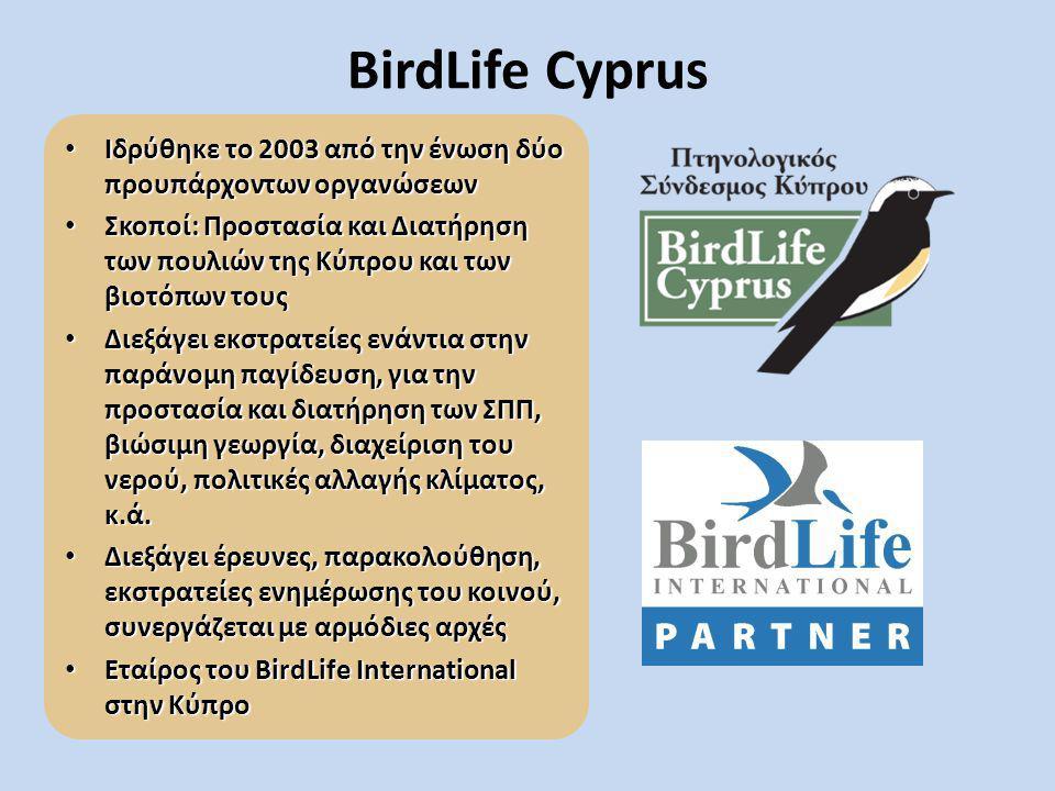 BirdLife Cyprus Ιδρύθηκε το 2003 από την ένωση δύο προυπάρχοντων οργανώσεων.