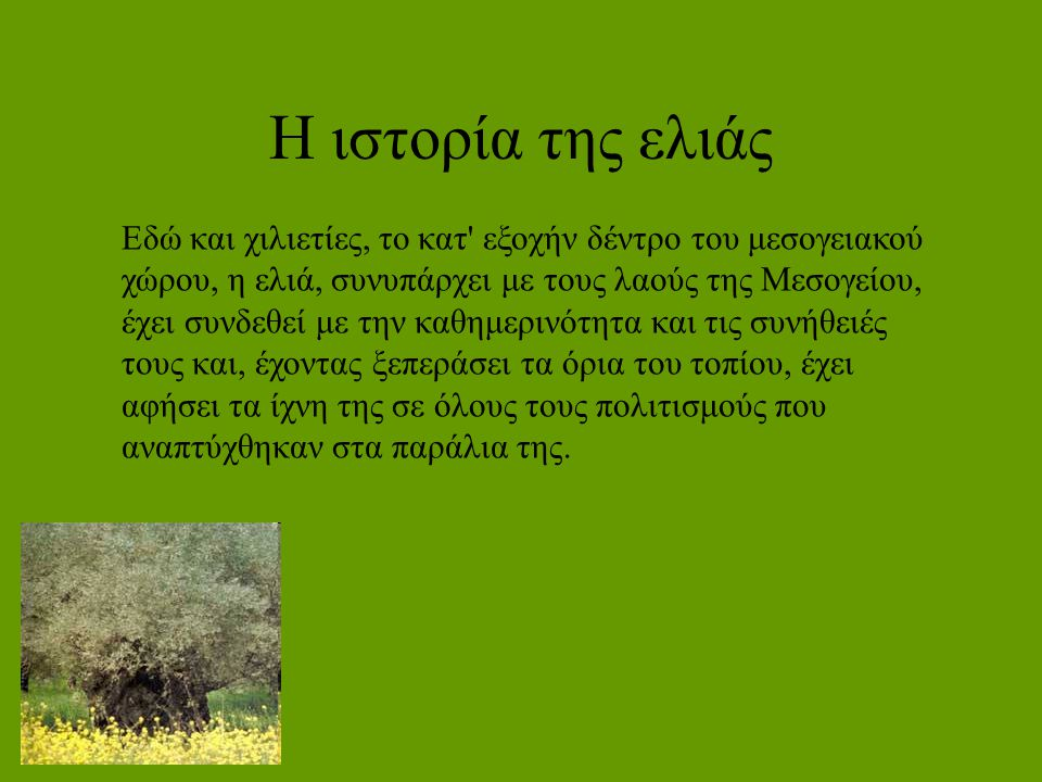 Η ιστορία της ελιάς