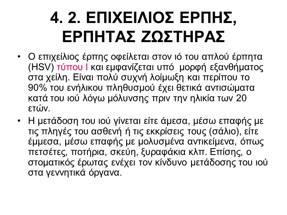 4. 2. ΕΠΙΧΕΙΛΙΟΣ ΕΡΠΗΣ, ΕΡΠΗΤΑΣ ΖΩΣΤΗΡΑΣ