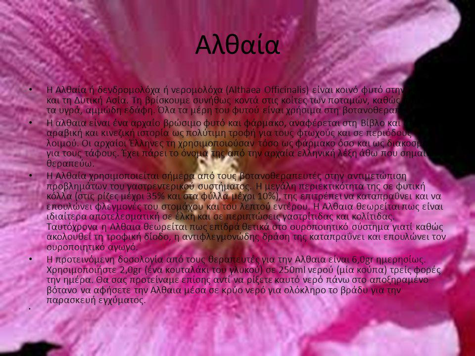 Αλθαία