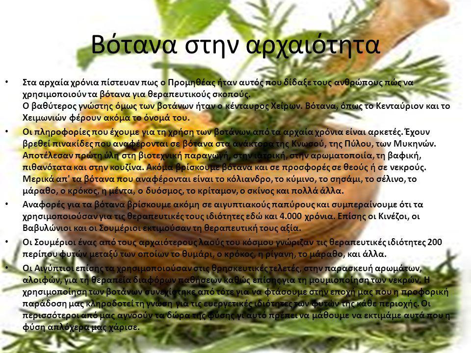 Βότανα στην αρχαιότητα