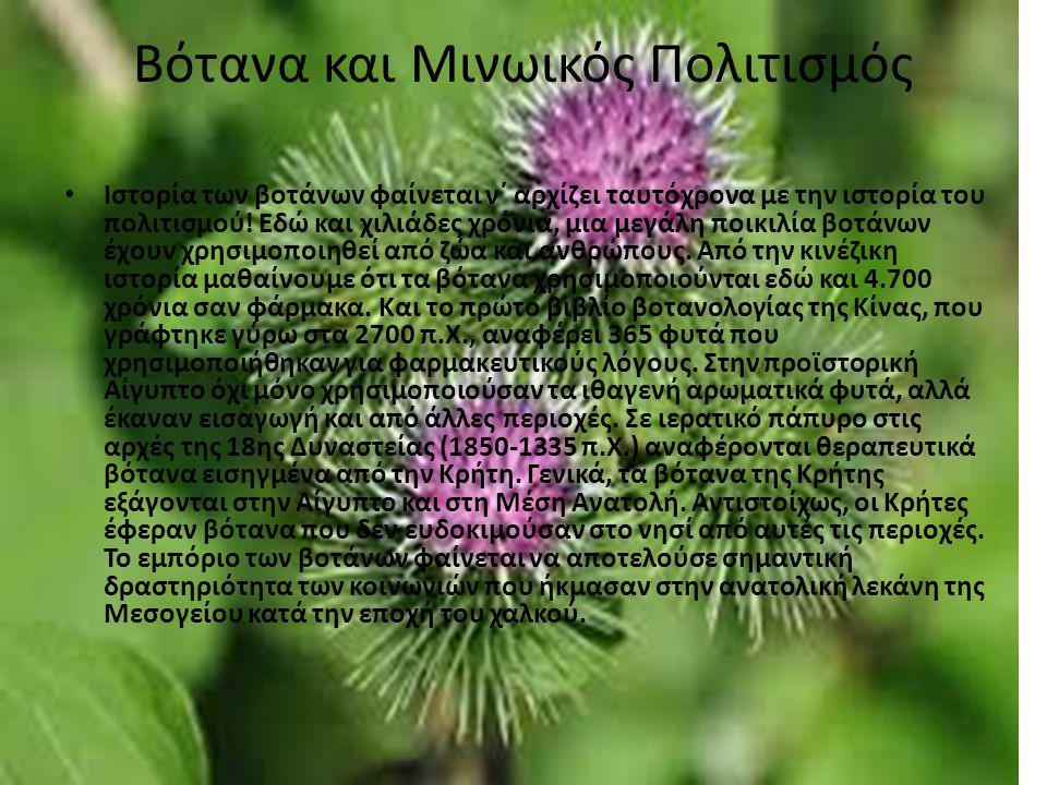 Βότανα και Μινωικός Πολιτισμός