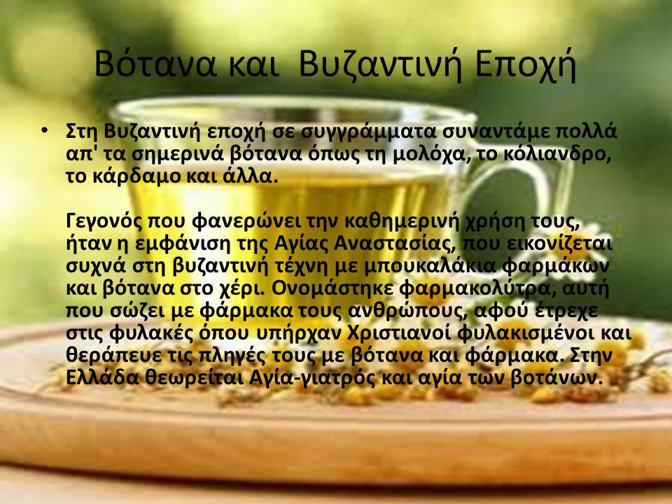 Βότανα και Βυζαντινή Εποχή