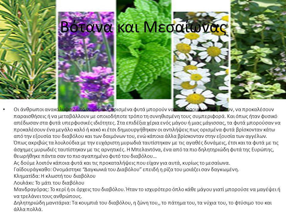 Βότανα και Μεσαίωνας