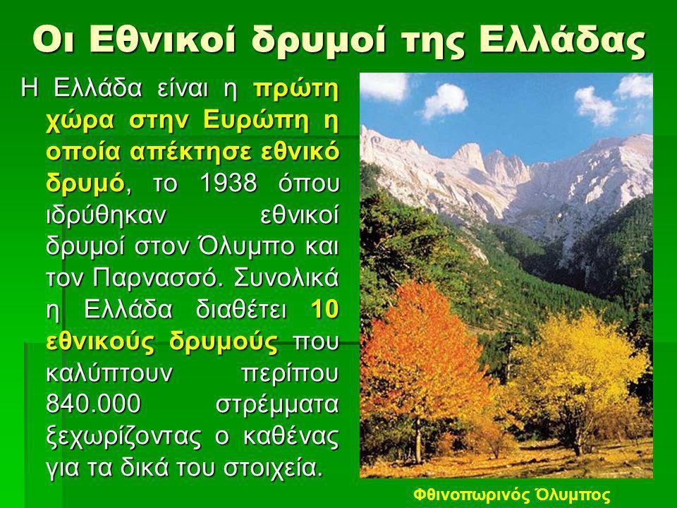 Οι Εθνικοί δρυμοί της Ελλάδας