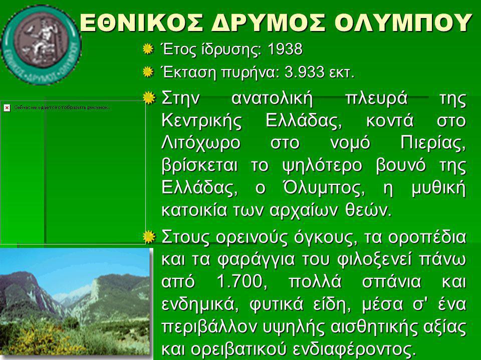 ΕΘΝΙΚΟΣ ΔΡΥΜΟΣ ΟΛΥΜΠΟΥ