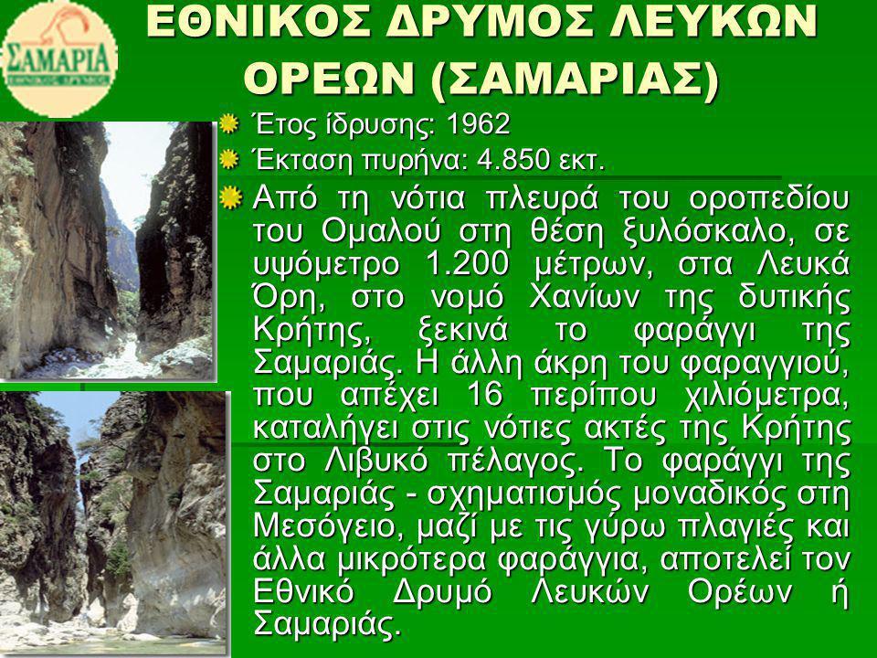 ΕΘΝΙΚΟΣ ΔΡΥΜΟΣ ΛΕΥΚΩΝ ΟΡΕΩΝ (ΣΑΜΑΡΙΑΣ)