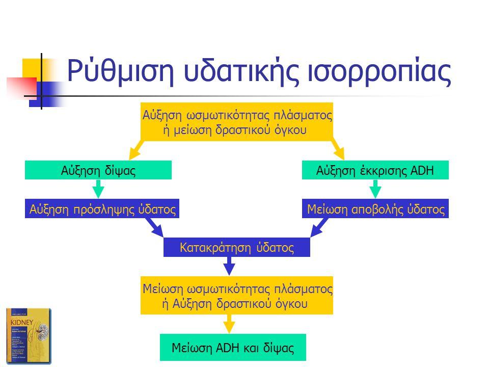Ρύθμιση υδατικής ισορροπίας