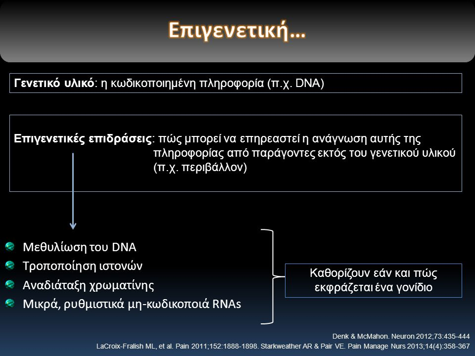 Καθορίζουν εάν και πώς εκφράζεται ένα γονίδιο