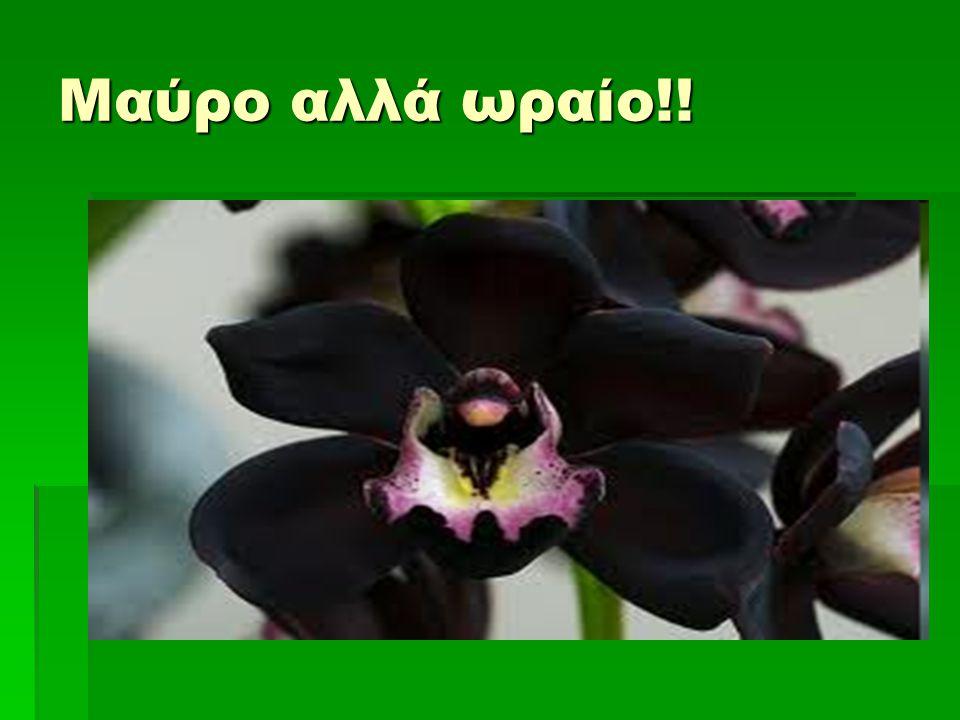 Μαύρο αλλά ωραίο!!