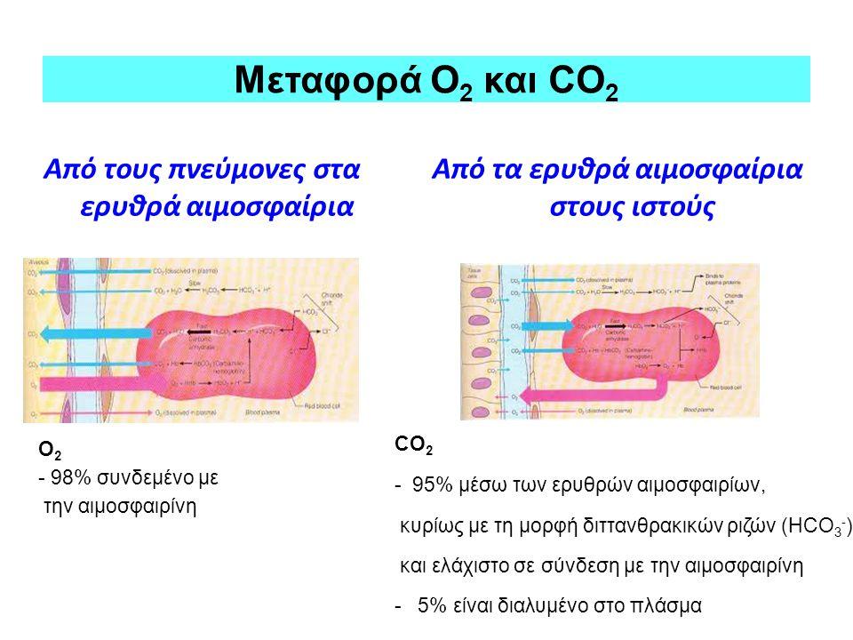 Μεταφορά Ο2 και CO2 Από τους πνεύμονες στα ερυθρά αιμοσφαίρια