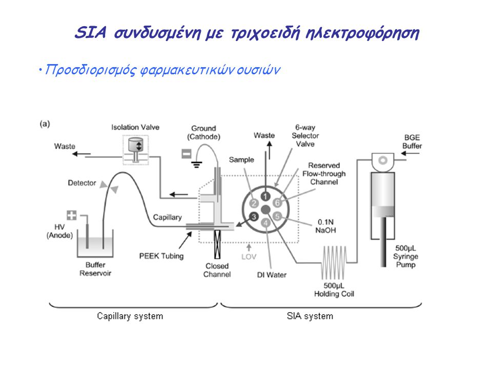 SIA συνδυσμένη με τριχοειδή ηλεκτροφόρηση