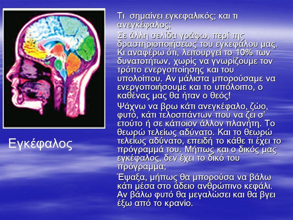 Εγκέφαλος Τι σημαίνει εγκεφαλικός; και τι ανεγκέφαλος;