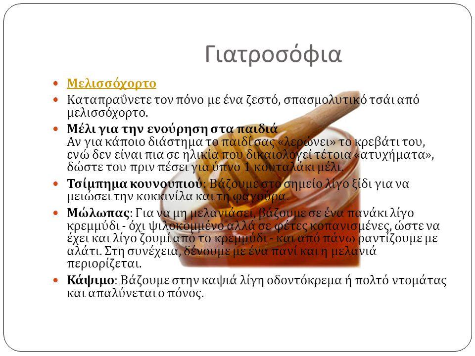 Γιατροσόφια Mελισσόχορτο