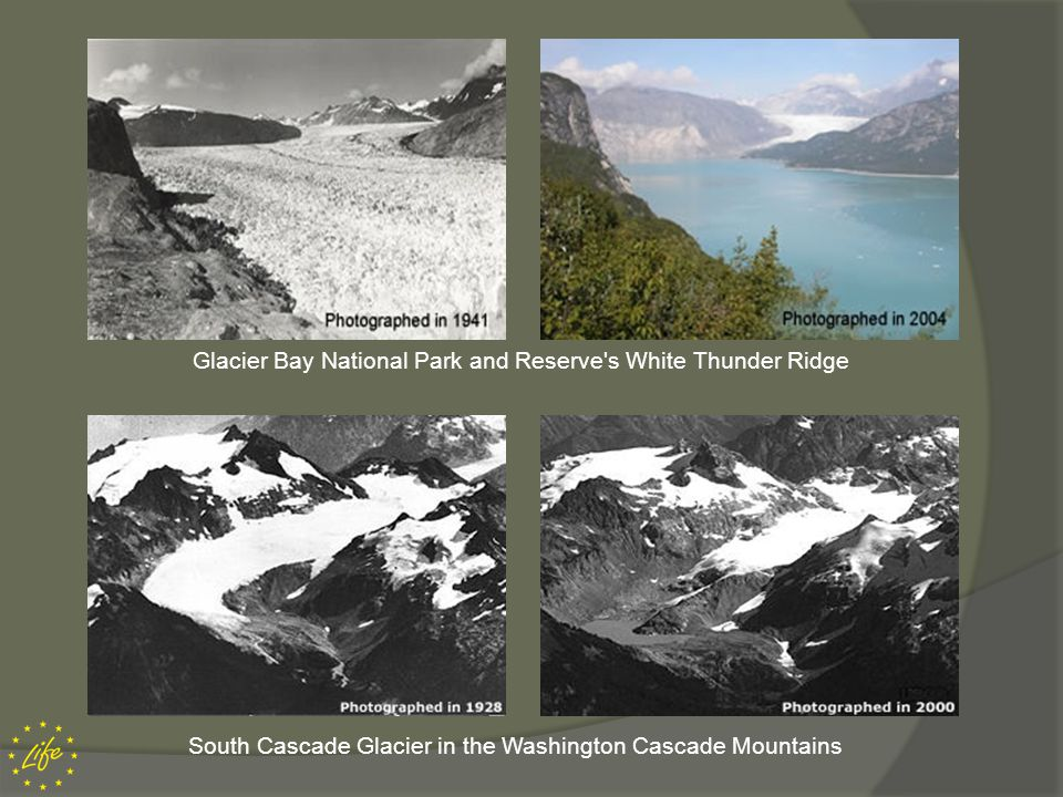 Glacier Bay National Park and Reserve s White Thunder Ridge