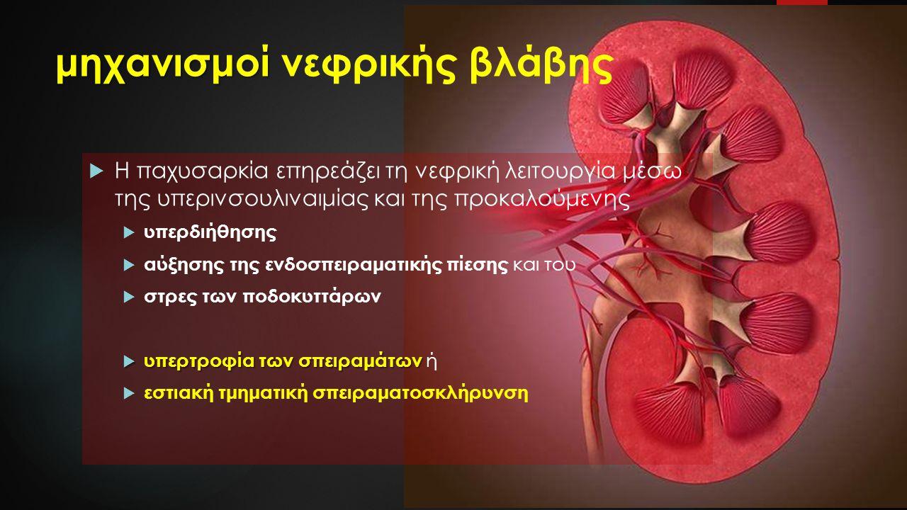 μηχανισμοί νεφρικής βλάβης