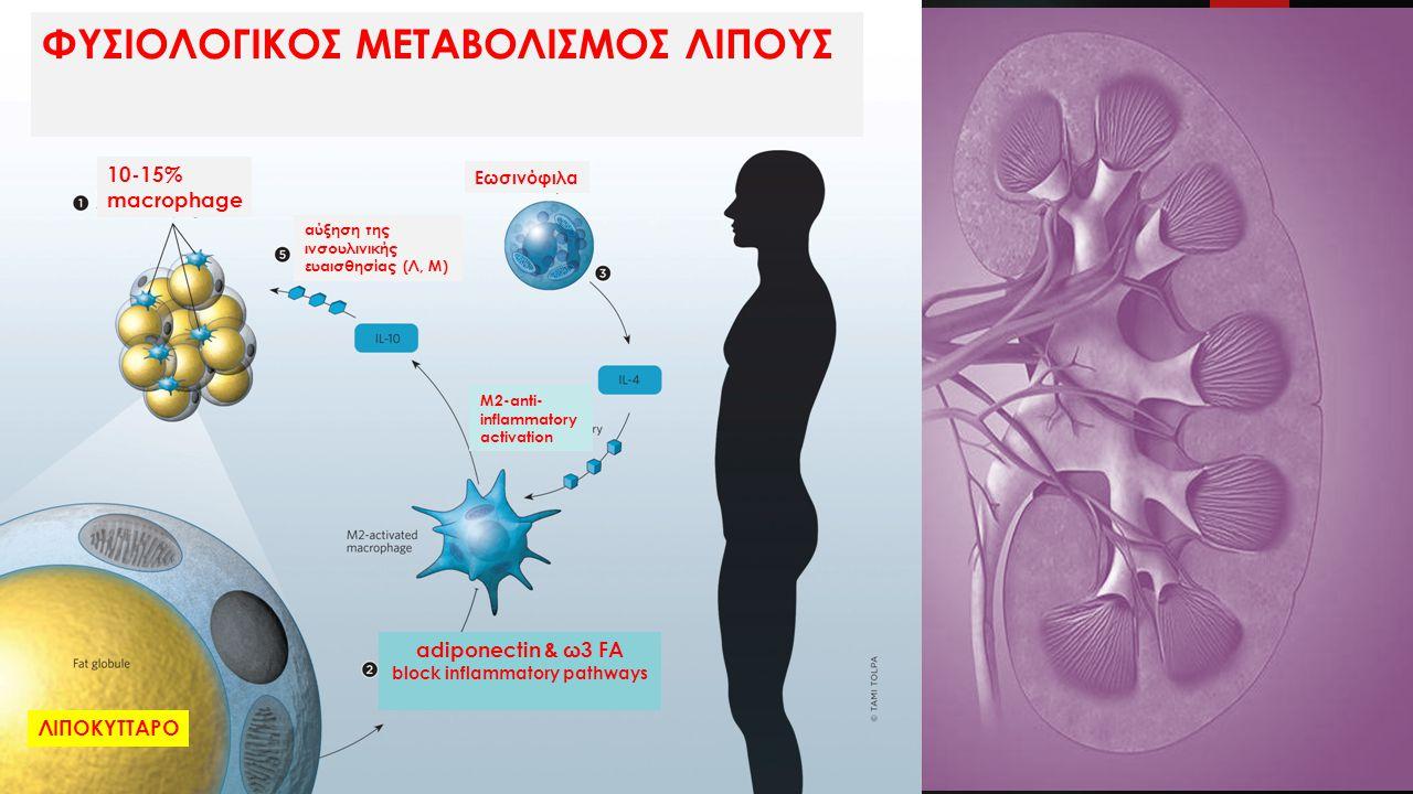 block inflammatory pathways