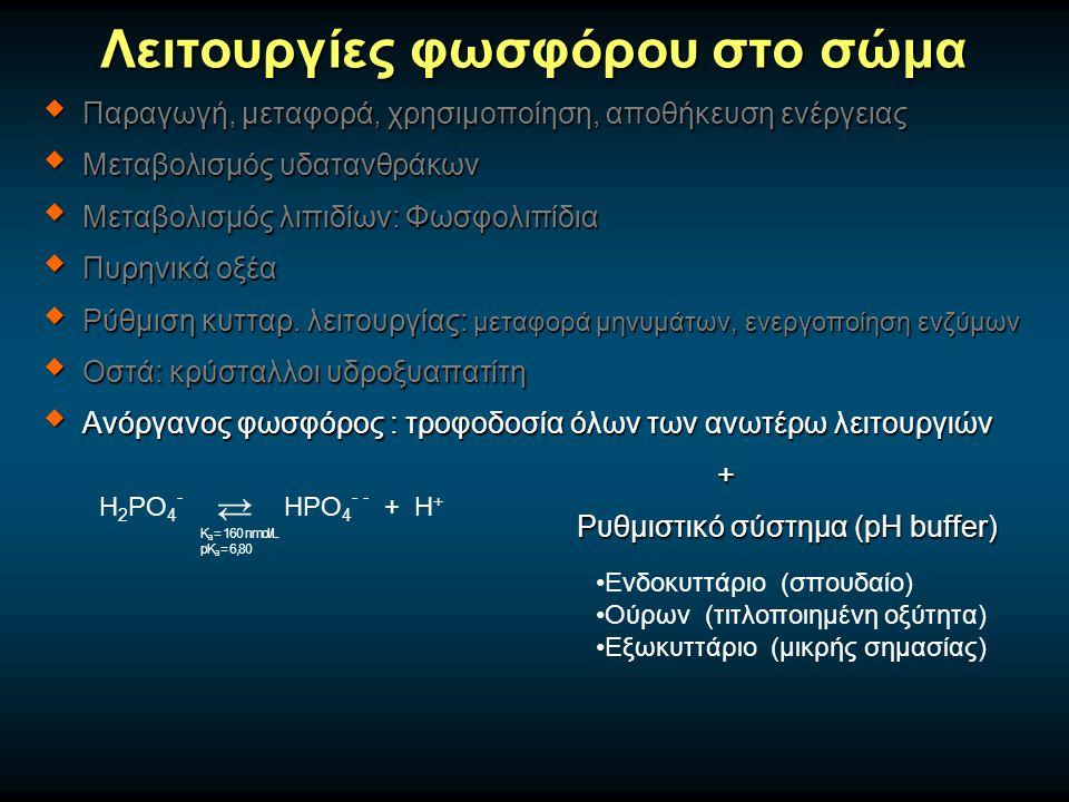 Λειτουργίες φωσφόρου στο σώμα