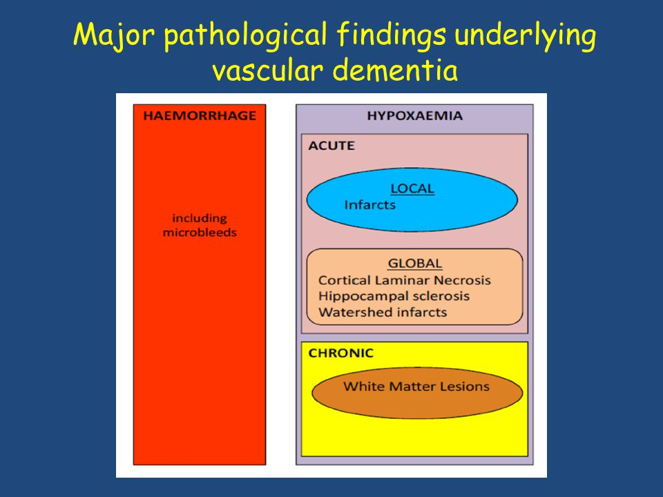 Major pathological findings underlying vascular dementia