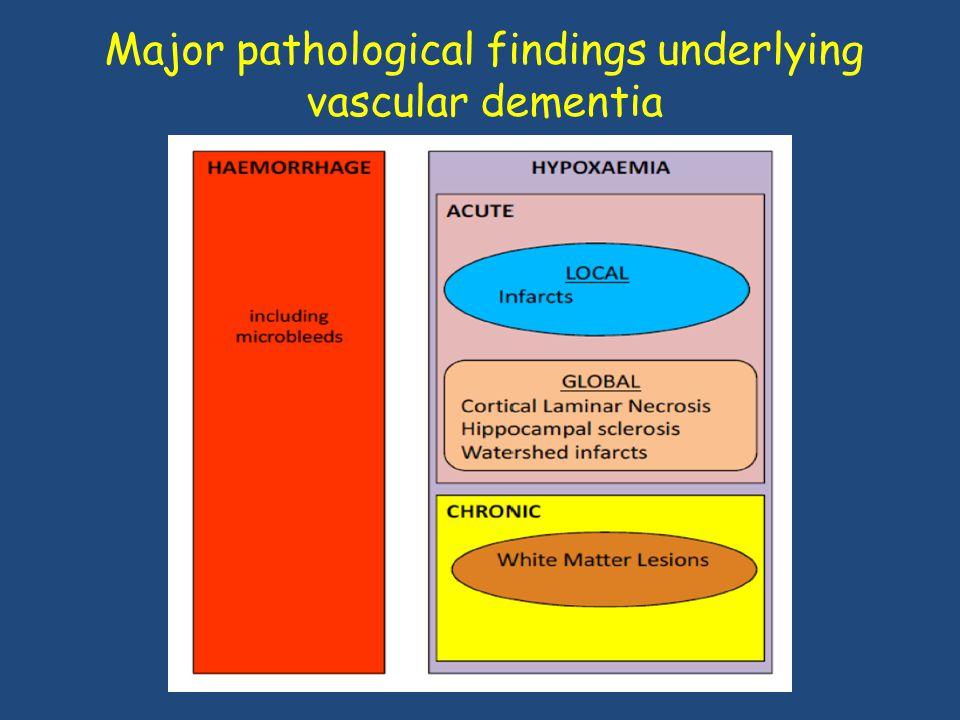 Major pathological findings underlying vascular dementia