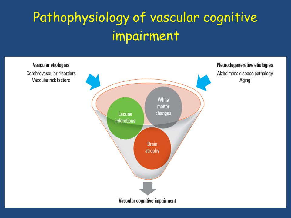 Pathophysiology of vascular cognitive impairment