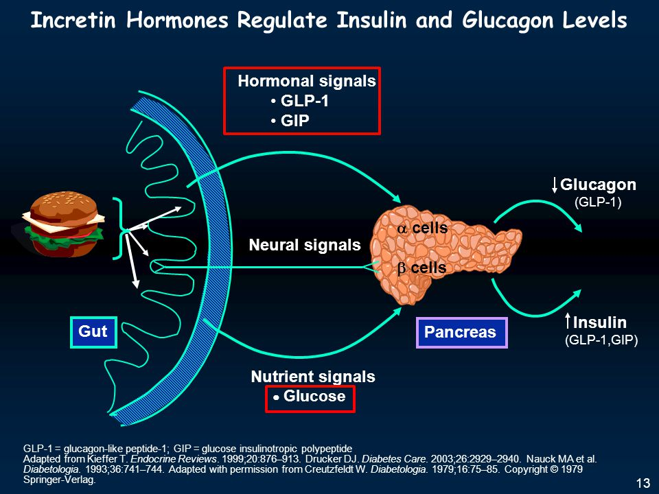 Incretin Hormones Regulate Insulin and Glucagon Levels