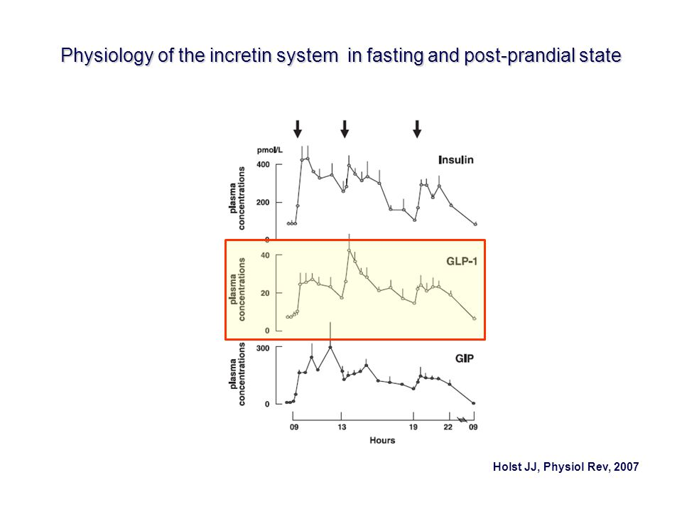 Physiology of the incretin system in fasting and post-prandial state