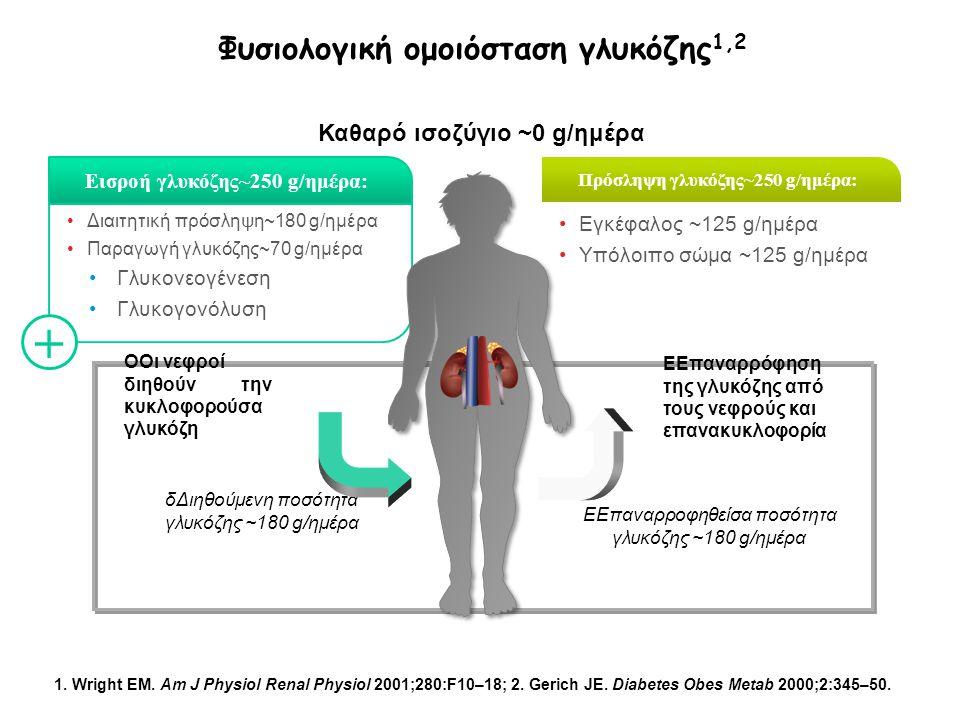Φυσιολογική ομοιόσταση γλυκόζης1,2