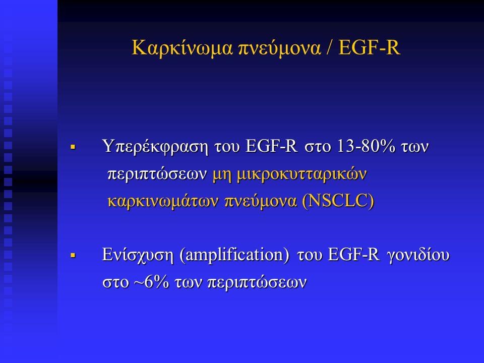 Καρκίνωμα πνεύμονα / EGF-R