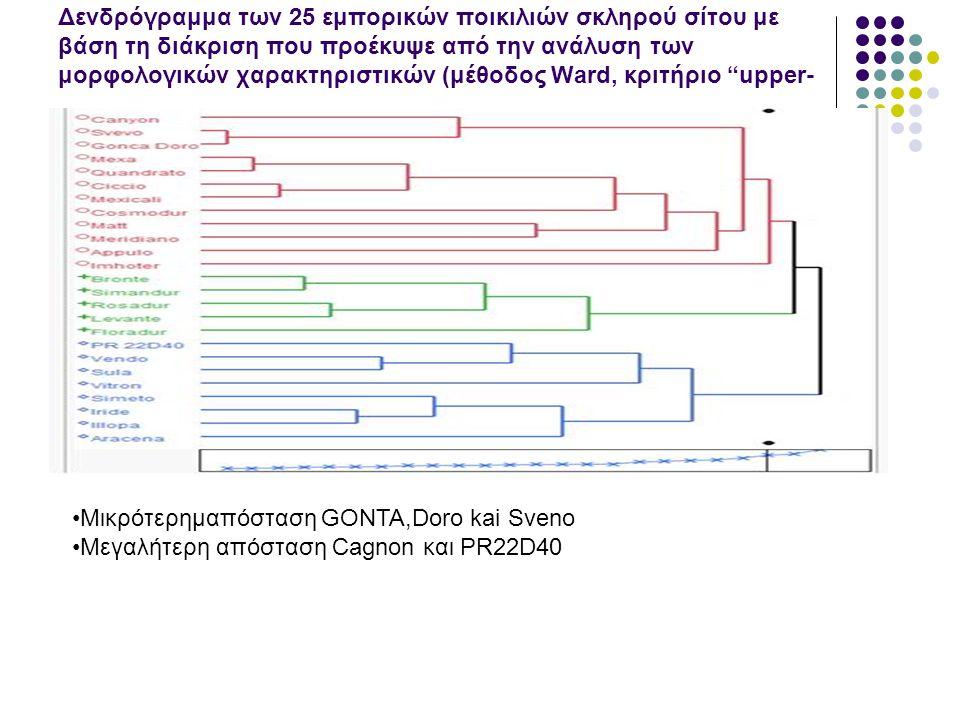 Δενδρόγραμμα των 25 εμπορικών ποικιλιών σκληρού σίτου με βάση τη διάκριση που προέκυψε από την ανάλυση των μορφολογικών χαρακτηριστικών (μέθοδος Ward, κριτήριο upper-tail για α=0,10)